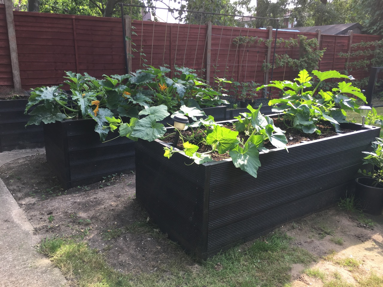 High Low Garden Beds