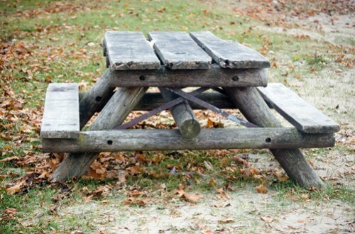 Old Rotting Wood Bench