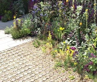 A driveway laid with plastic grid allows plants to grow through