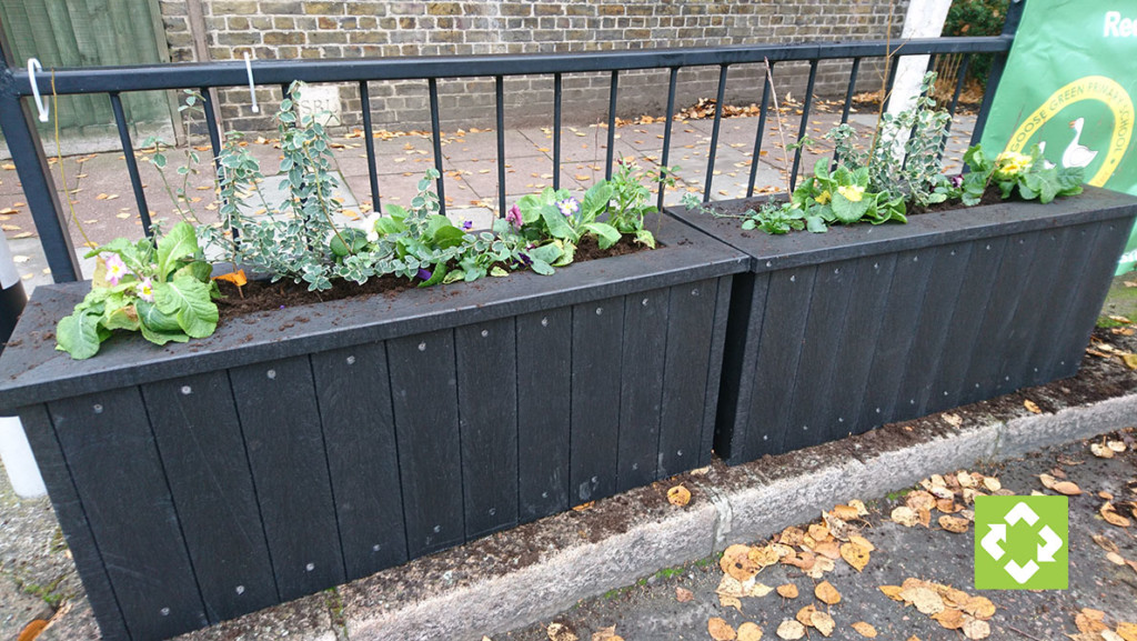 Planters with eight-inch plants growing. The plants are growing nicely and will be added to with the new planting project currently being planned.