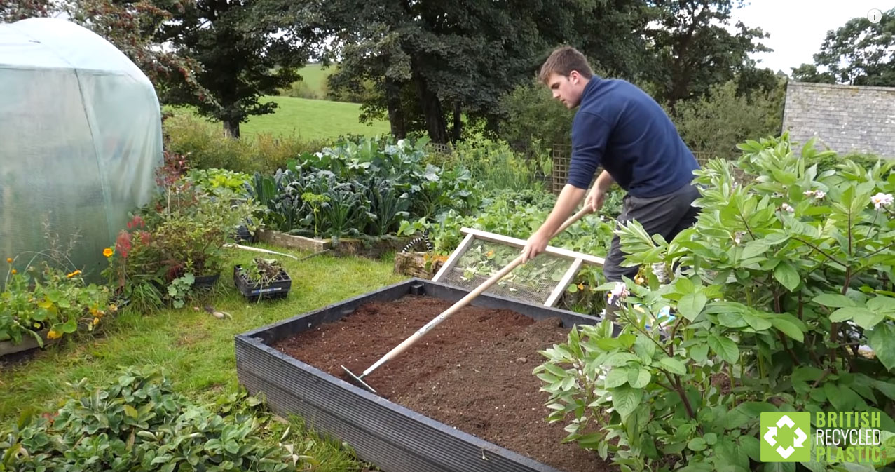 Huw Richards raking soil in a recycled plastic raised bed on his organic allotment during the summer, surrounded by abundant vegetables.