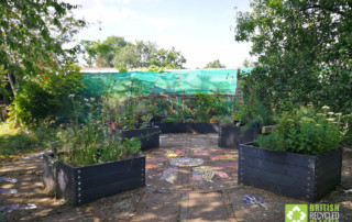 Earthworks St Albans' new raised garden for wheelchair users