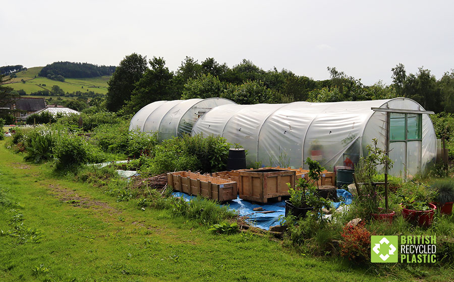 Redacre's shared polytunnel