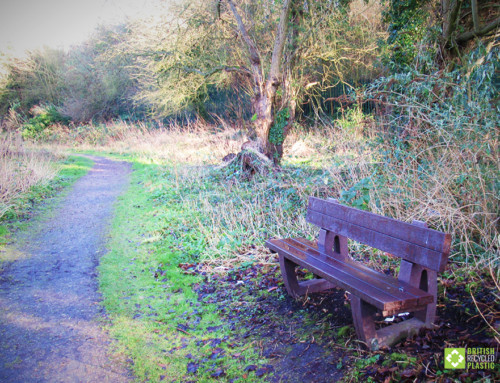 New beauty-spot benches for Marconi Ponds Nature Reserve
