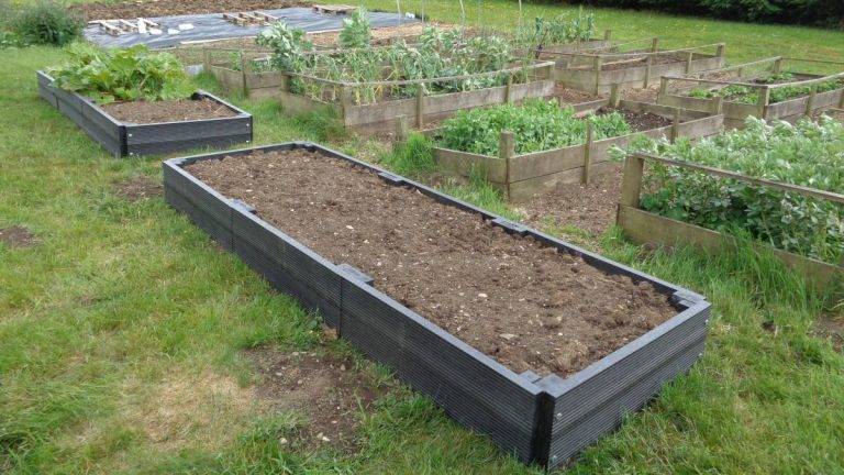 A pair of recycled plastic raised beds completed and filled.