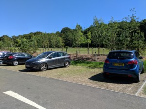 Grassed parking bay with Hebden X Grid