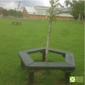 Recycled plastic lumber planks used to build a pentagonal bench around the trunk of a tree