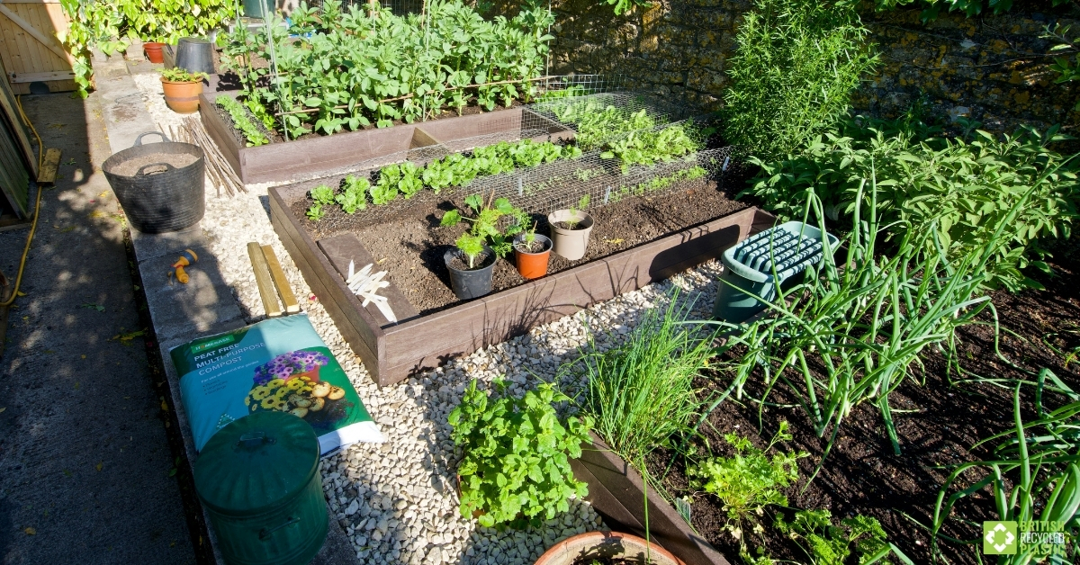 An aerial view of Andrew's custom raised bed full of vegetables