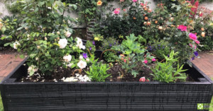 Flowers of many colours growing in a BRP recycled plastic raised bed.