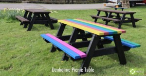 Denholme picnic table in rainbow