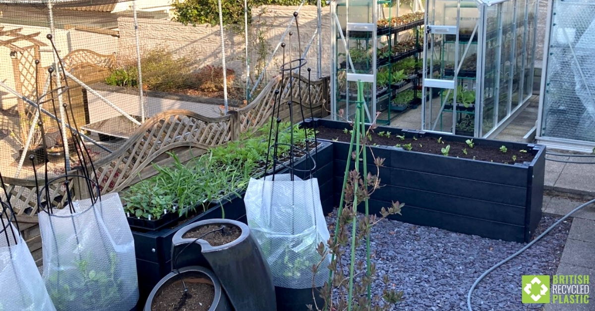 British Recycled Plastic raised beds + greenhouse