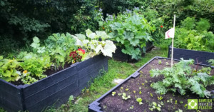 600mm raised bed kits engineered from British Recycled Plastic