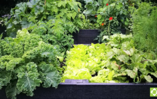 Raised bed kit engineered from British Recycled Plastic