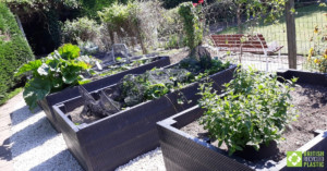 Raised beds engineered from British Recycled Plastic
