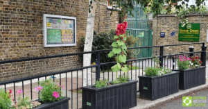 Smog shield planters in full bloom. Engineered from British Recycled Plastic at Goose Green School 02