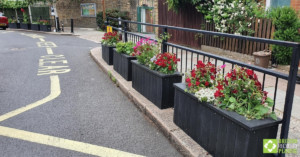 Smog shield planters in full bloom. Engineered from British Recycled Plastic at Goose Green School 01
